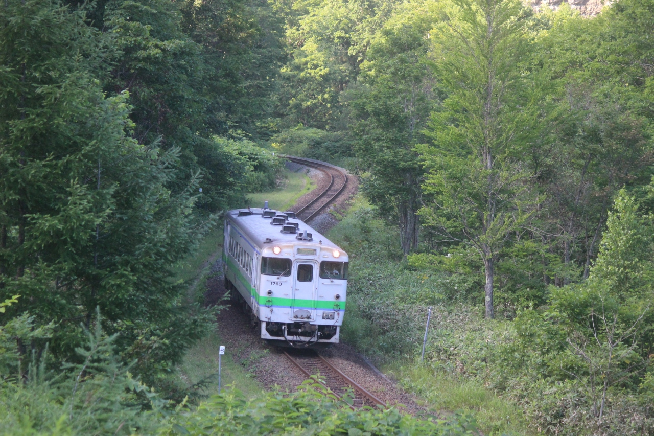廃線される赤字ローカル線を保存鉄道化するという選択肢。
