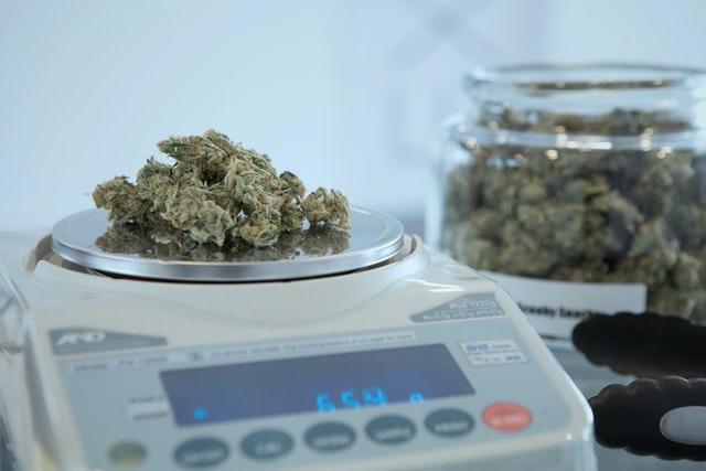 【大麻が安全は嘘】大麻吸引で脳の正常な神経回路まで破壊される研究報告。